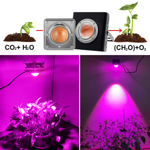 Image 5 - 300W LED Grow Light Full Spectrum High Luminous Efficiency for Indoor Outdoor Hydroponic Greenhouse Plant Growth Lighting lamp