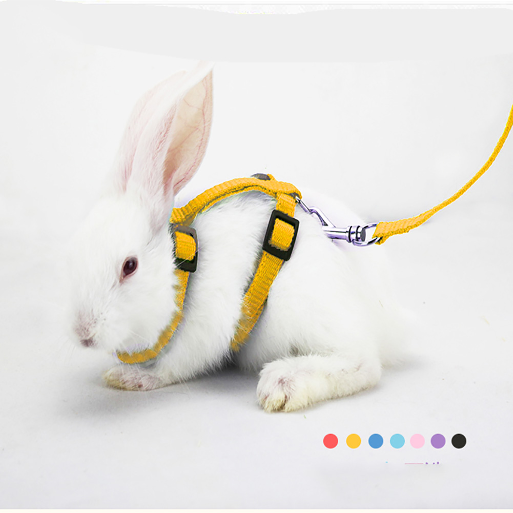 Small Pet Rabbit Harness Leash Soft Nylon Running/Walking Harness Leash With Safe Bell For Guinea Pigs Ferret Cat Rat Pet Pigs