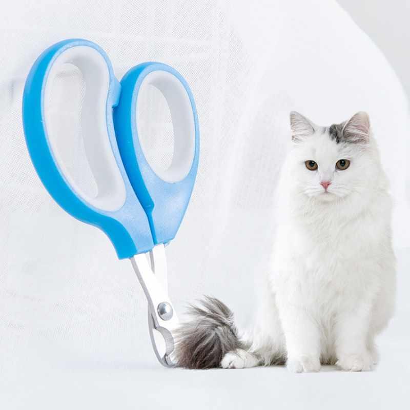 Маникюрный салон для котят