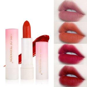 Women Lip Makeup Lipstick Waterproof Nude Matte Velvet Lip Gloss Long Lasting Moisture Cosmetic Sexy Red Lip Make Up Batom TSLM1