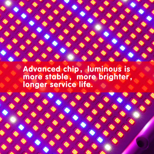Image 2 - 2000LED Grow Light With Dimmer AC85~265V Indoor Greenhouse Tent Hydroponic Aquarium 200W Full Spectrum Adjustable Led Grow Lamp