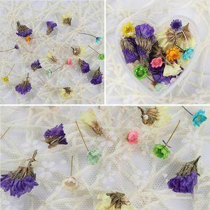 1 коробка эпоксидный наполнитель настоящие сухие цветы Смешанные 3D наклейки для ногтей Декор гербарий ремесло