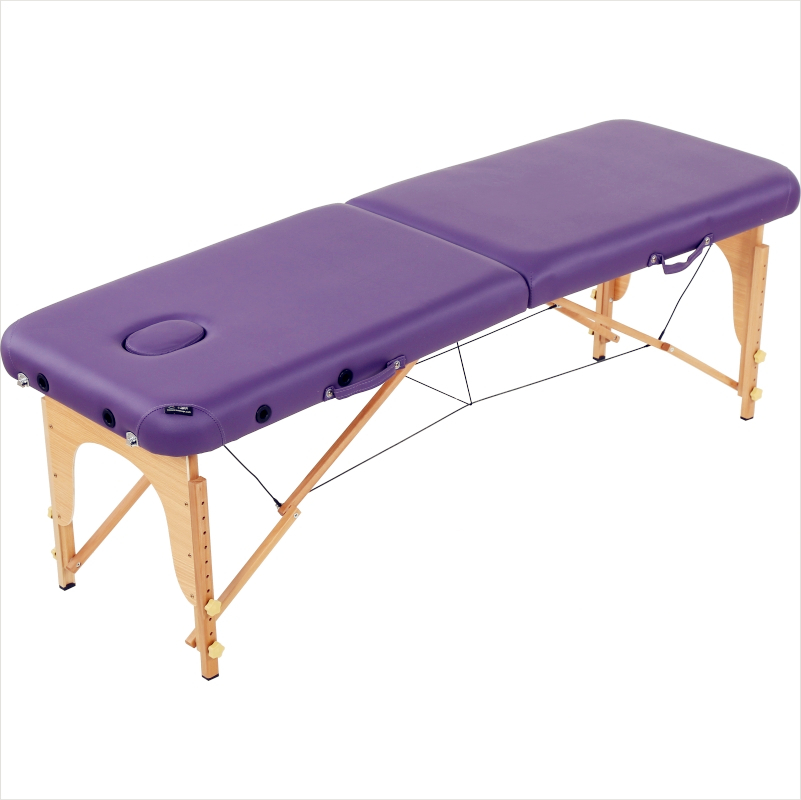 Beauty Bed Massage Bed Fire Therapy Home Massage Bed Physiotherapy Tattoo Bed Portable Folding