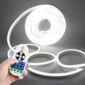 Затемняемый неоновый светодиодный светильник 220 В 110 В, США, ЕС, Великобритания, набор неоновых вывесок, лампа с диммером 2835 120 светодиодный/м ...