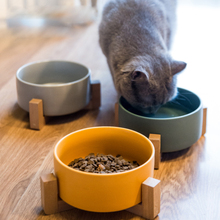 New ceramic cat bowl Solid color simple rice Pet supplies dog with base tableware Cat water basin High value pet