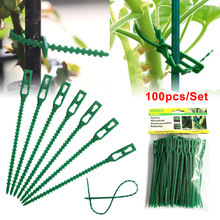 Support-Clips-Clamps Vine Vegetables-Tomatoes-Clips Greenhouse Plant Plastic Garden Hanging