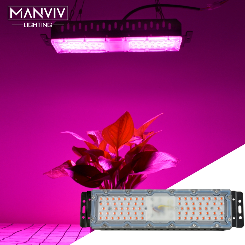 60W Full Spectrum LED Plant Grow Light Lamp 220V For Plant Indoor Nursery Flower Fruit Veg Hydroponics System Grow Tent Fitolamp