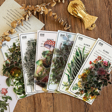 Mohamm 40Pcs Natural Series Scrapbooking Stickers PET Plants Sticker Flakes Stationary Office Accessories Art Supplies