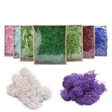 Micro-Landscape-Accessories Moss-Grass Artificial-Plant Home-Decoration Eternal Flower-Material