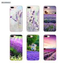 Transparent Soft Cases Covers Watercolor Painting Lavender Art For iPhone 11 X XR XS Pro MAX 4 4S 5 5S SE 5C 6 6S 7 8 Plus(China)
