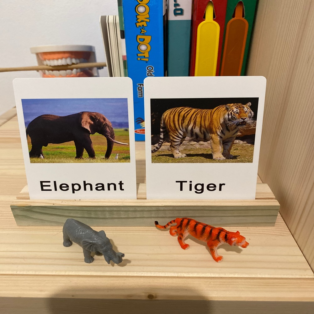 24 шт./компл. Монтессори Детские обучение английскому языку животные детские карты для раннего развития детей практической жизни игрушки для детей L2666F 3