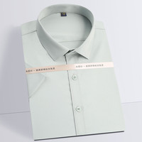 Casual Silky Fabric Non-iron Dress Shirt 1