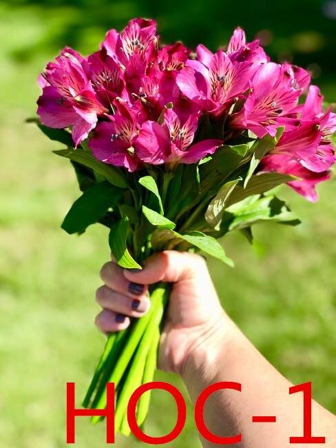 Wedding Bridal Accessories Holding Flowers 3303 HOC 1-16