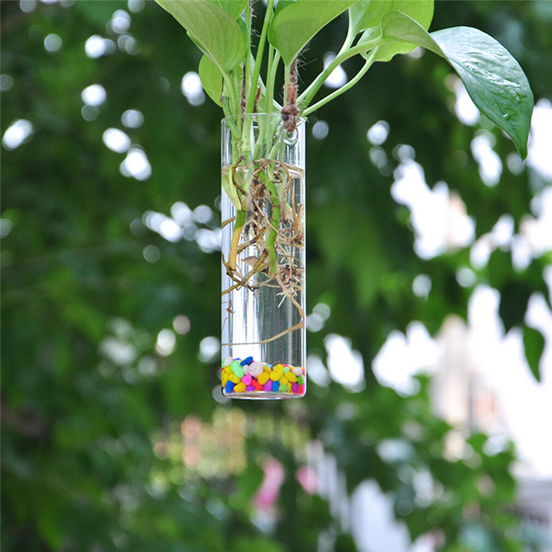 Hanging Glass Terrarium Container and Flower Plant Pot for Party/Wedding Decor 4