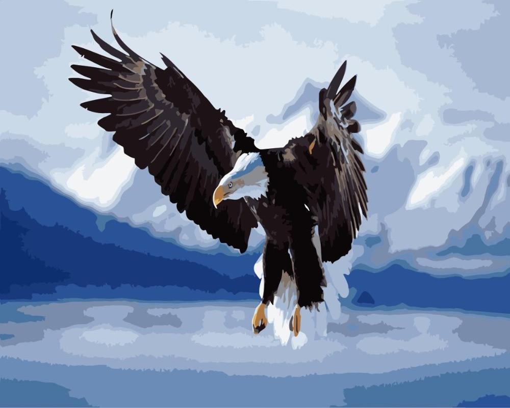 WM-1812-雪上雄鹰