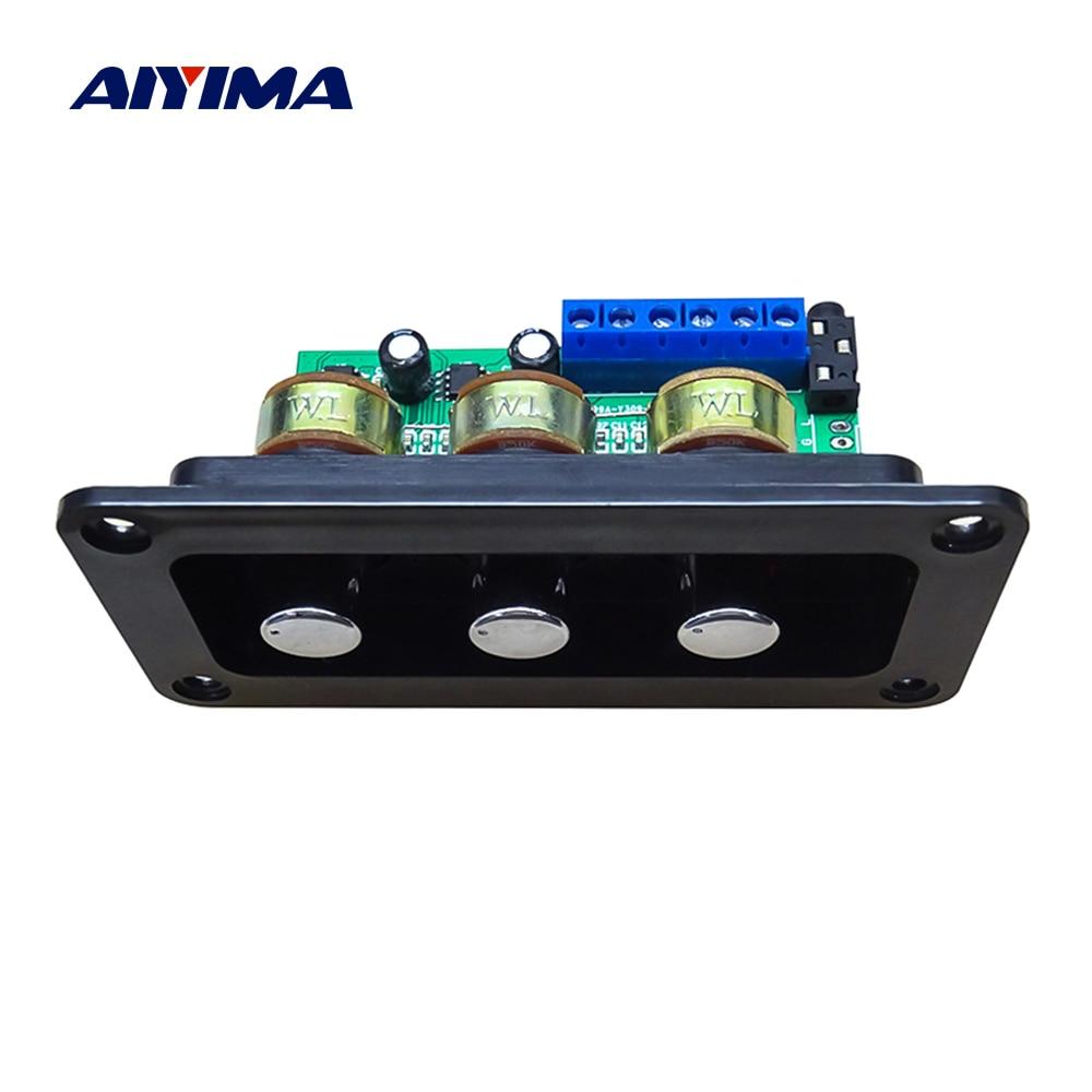 AIYIMA-Amplificador de potencia Digital para cine en casa, tarjeta de Audio, 2x20W, Clase D, sonido estéreo, agudos, ajuste de graves, bricolaje