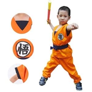 Fancy Dress Dragon Ball Suit C