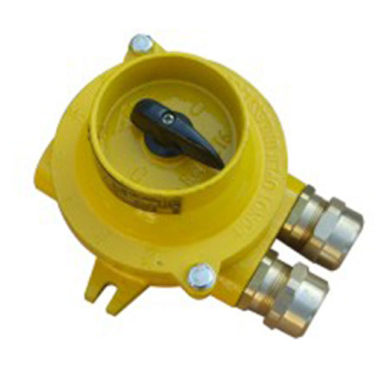 LANDSKY Factory DirectSupply Marine Switch Junction Box, Etc. 16A Marine Explosion-proof Switch FHH Series