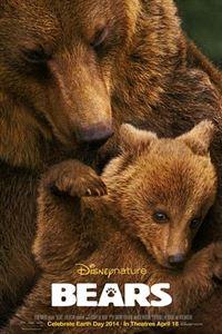 熊世界[BD]
