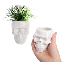 Planters Flower-Pots Skull White Modern-Design Desktop-Accessories Home-Decoration Creative