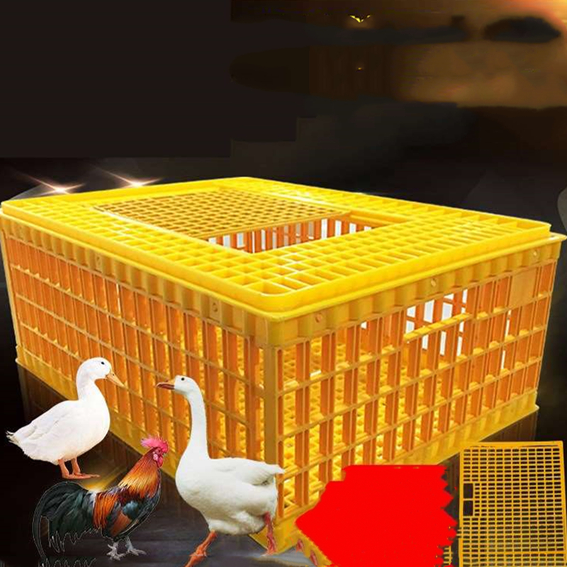 Chicken Plastic Cage Chicken Cage Home Large Extra Large Chicken Duck Goose Poultry Transport Turnover Box Thick Plastic