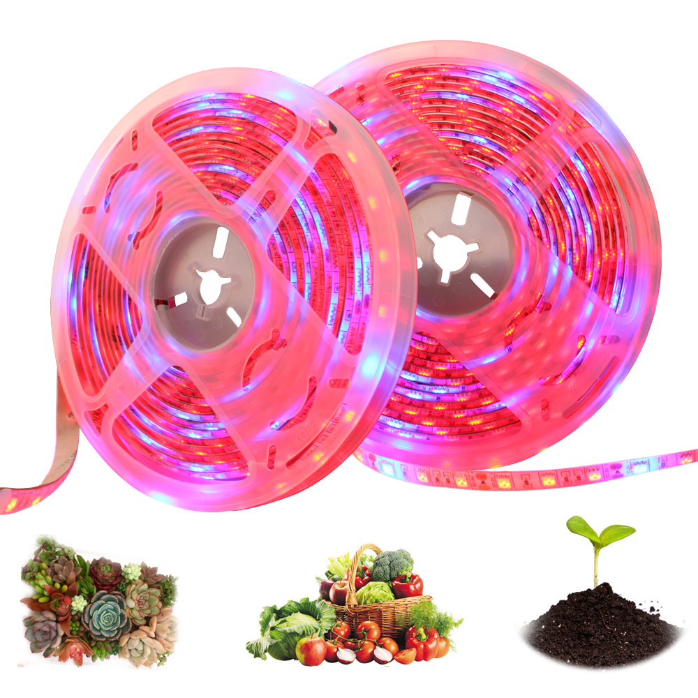 LED Grow Light 5m Waterproof 12V 5050 Full Spectrum LED Strips Flower Phyto Growth Lamps For Greenhouse Hydroponic Plant Growing