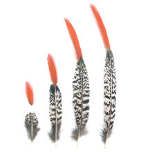 Натуральные дамские перья фазана для рукоделия 5 30 см/2 12