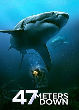 《鲨海》2016年英国,美国,多米尼加惊悚,冒险电影在线观看
