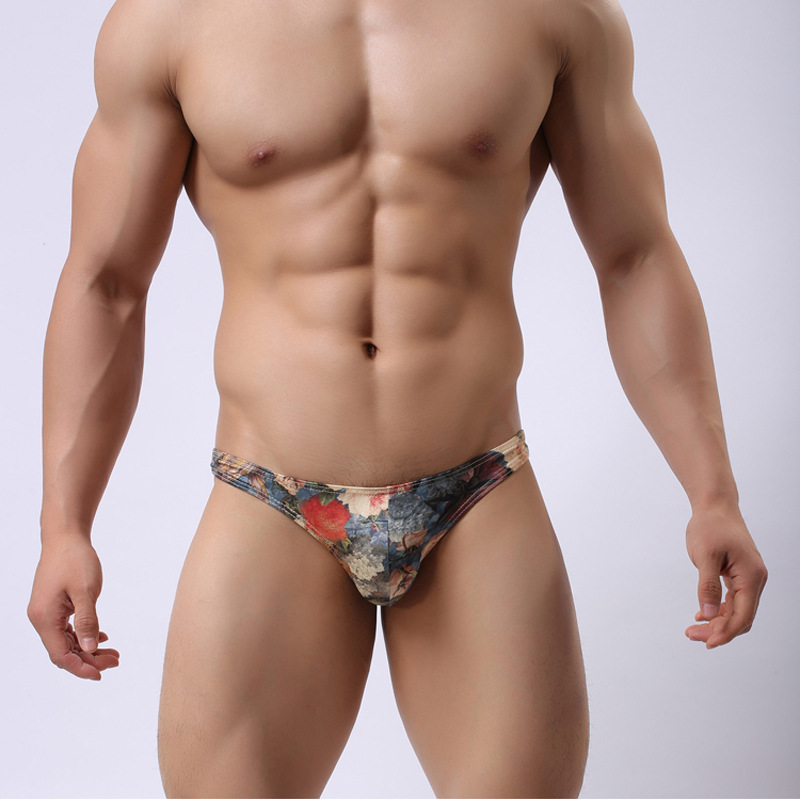 Brand Howe Ray Men's Gay Underwear Fashion Breathable Milk Silk Retro Palace Printing Triangle Underwear Sexy Print Briefs