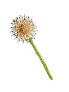 Enamel Brooches Pins Flower Weddings-Plants-Brooch Dandelion Women Gifts Wuli Baby Men's