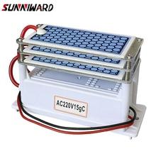 220 V  15g /10g 쌍둥이 보전 체계의 회색 오존 조직, G Ozonator 대기권은 여과기 보다는 세탁기술자입니다.