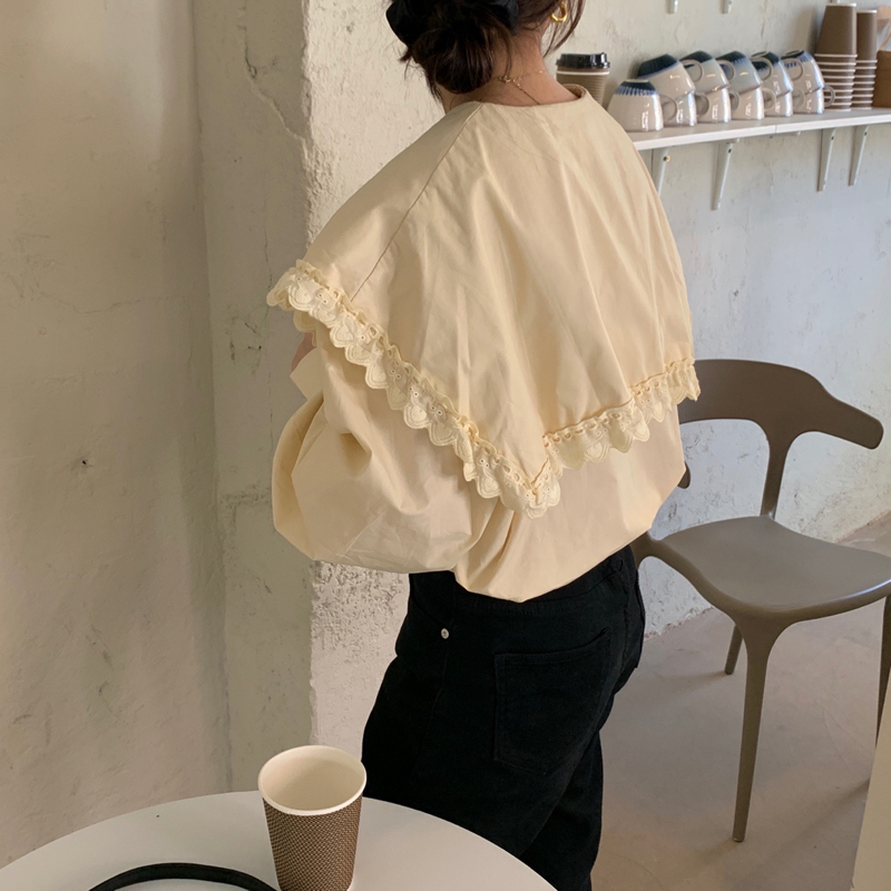 Ha602c5c1e742498e87645cfd73471efaq - Spring / Autumn Lace-Up Collar Long Sleeves Loose pleated Solid Blouse