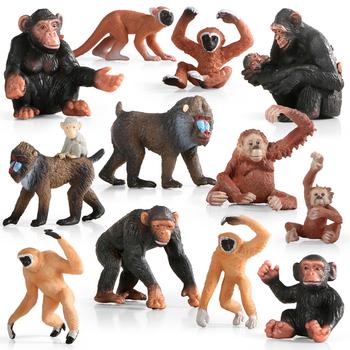 Dzikie zwierzęta leśne szympans rodzina Mandrill Monkey modele symulacja figurki Action figurki zabawki edukacyjne dla dzieci zabawki tanie i dobre opinie criswisd Dla osób dorosłych 4-6y 7-12y 12 + y 18 + CN (pochodzenie) Unisex come not with original box as pictures Remastered Version