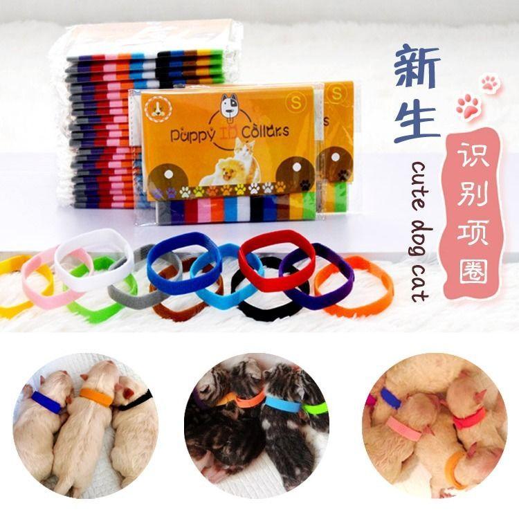 Pet Collar Dog Cat Neck Ring Velcro Identity Identification Neck Ring Kitten Puppy Neck Ring Compartmental Neck Ring