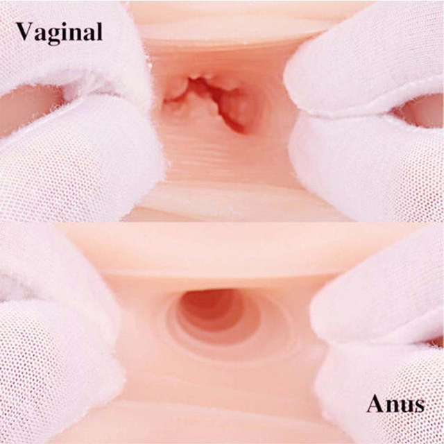 Vagina and Anal Sex Toys