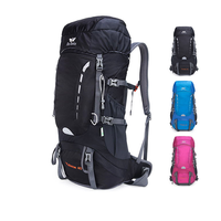 Outdoor Mountaineering Bags 40L Backpack Camping Waterproof Mountaineering Hiking Backpacks Molle Sport Bag Climbing Rucksack