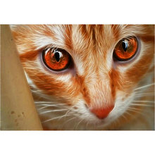 ArtBack 5D DIY Алмазная картина кошка картина полная квадратная лошадь Бриллиантовая мозаика с животным искусство Алмазная вышивка