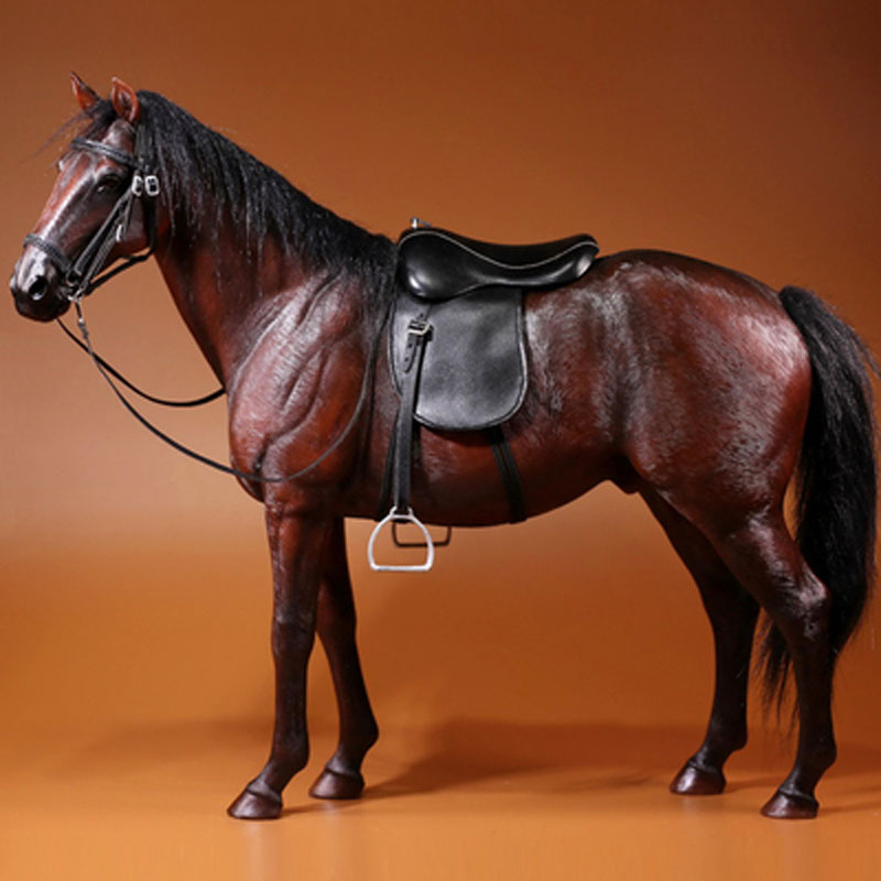 "Mr.Z 001~005 1//6 Germany Hanoverian Animal Hannover Horse Model F 12/"" Figure"