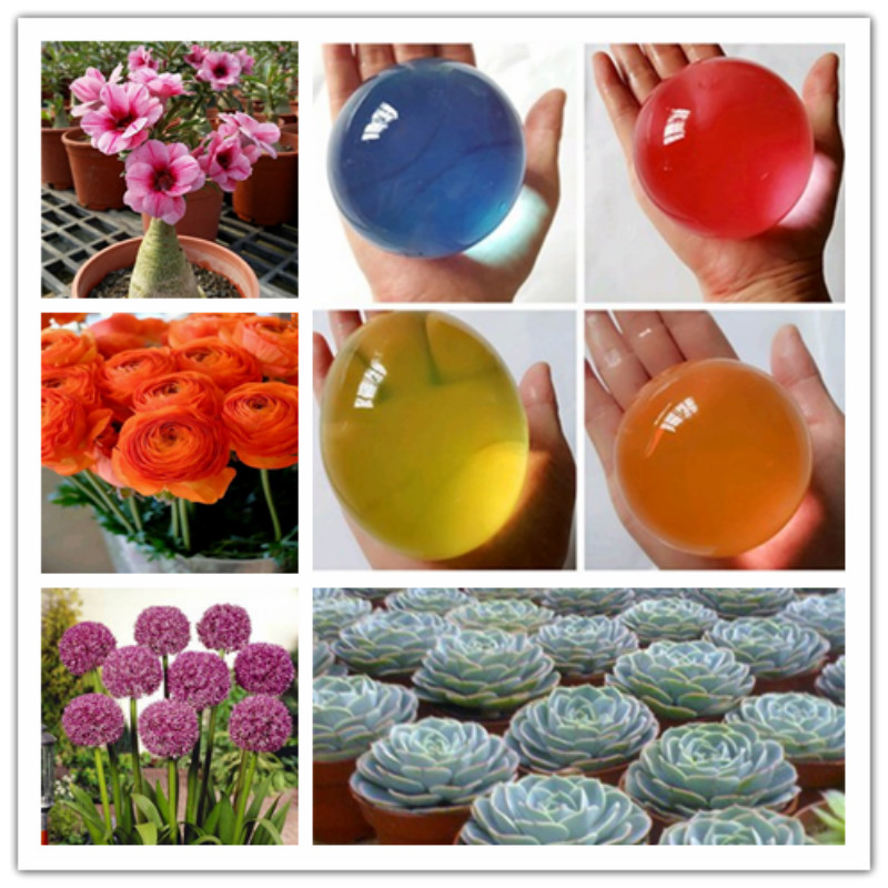 8-9pcs Large Hydrogel Pearl Shaped Big 4-5cm Crystal Soil Plants flowers potted fruit Grow Ball Wedding Growing Bulbs Home Decor image