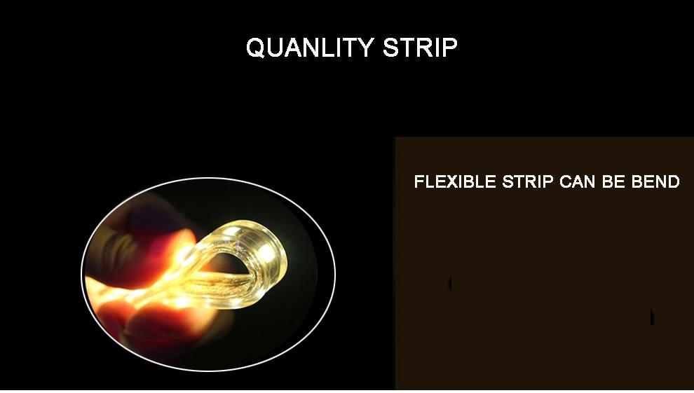 Ha66470efae6d4ee392f7d362d1a38dfap Super bright LED Strip 220V IP67 Waterproof 120LEDs/M SMD 3014 Flexible Light + Power Plug For outdoor garden tape rope