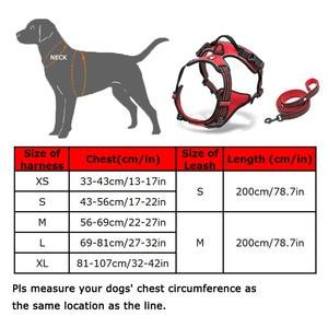 Image 5 - Truelove สายรัดสุนัขและสายจูงชุดสะท้อนแสงนุ่ม Chihuahua สายรัดสำหรับสุนัข Dropshipping