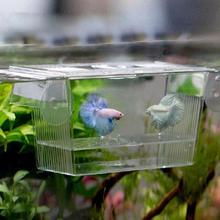 Акриловая изолирующая коробка для разведения аквариума, инкубатория, держатель для аквариума, товары для домашних животных