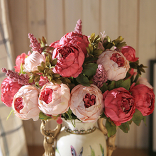 Casa del Branch/Bouquet Vivid