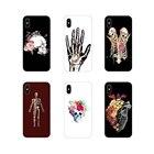 Human Anatomy Access...