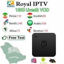Gotit S905+ королевский IP ТВ скандинавский курдский персидский Африканский арабский Россия IP tv m3u подписка Amlogic S905W Android Smart tv Box