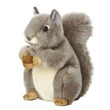 Kathyland 8 polegadas selvagem mundo miyoni esquilo cinzento pelúcia nutsie, 8