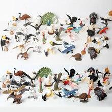 Simulação aves animais arara flamingos coruja kiwi cisne eagleshand pintado brinquedo estatueta modelo aves figura coleção para crianças