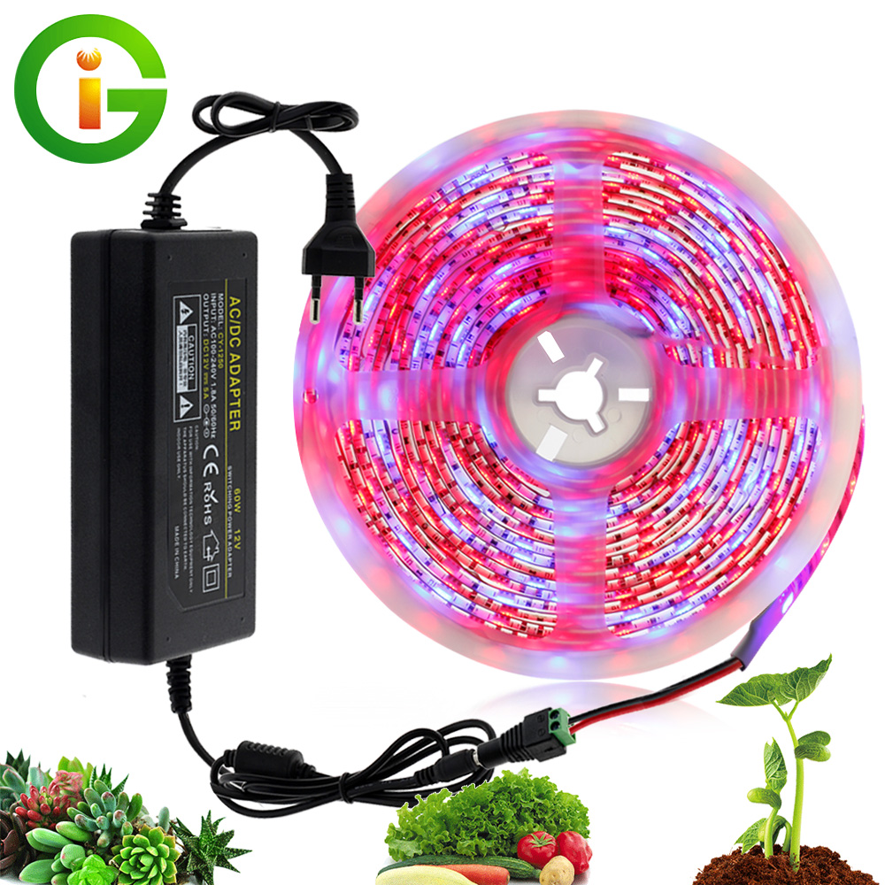 LED Grow Light 5M Waterproof DC12V Full Spectrum Growing LED Strip Plant Growth Light Set With US/EU Adapter And Switch