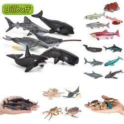 Имитация морской жизни ПВХ модель мини животное Кашалот Акула Дельфин Краб украшения Детская познавательная развивающая игрушка для детей
