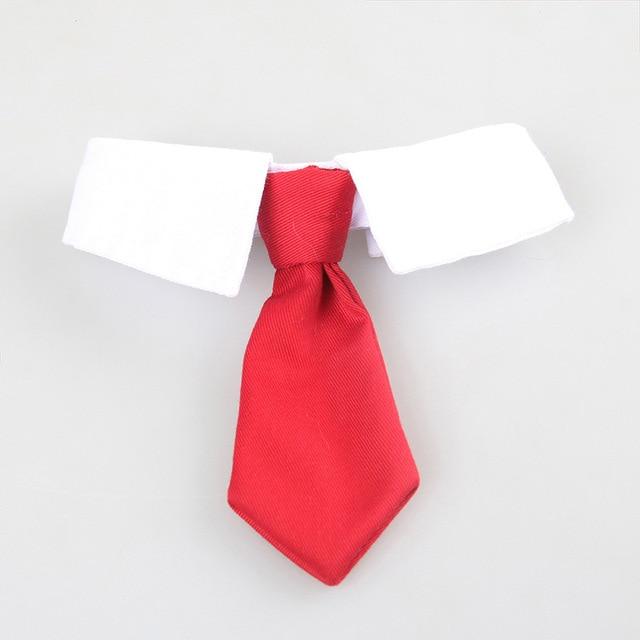 Галстук милый любимый Джентри галстук в полоску модный четыре